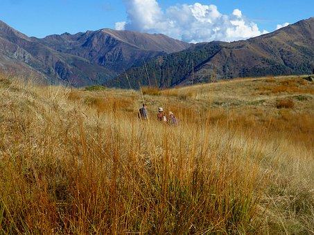 Switzerland, Ticino, Hiking, Cima Di Medeglia