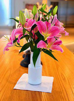 Lilies, Flowers, Pink