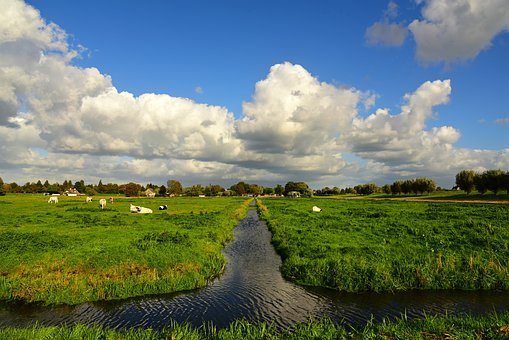 Ditch, Meadow, Field, Polder, Dutch Landscape, Skies