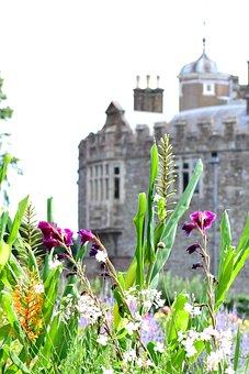 Garden, Castle, Flowers, Architecture, Nature, Park