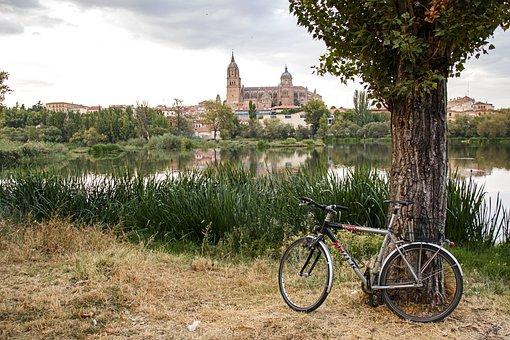 Landscape, River, Bicycle, Tree, Sky, Nature, Romantic