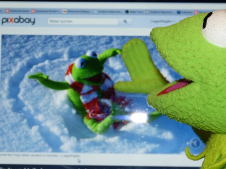 Kermit, Frog, Computer, Pixabay, See, Preview Image, Pc