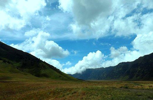Savana, Gunung, Bromo, Jawa Timur, Indonesia, East Java