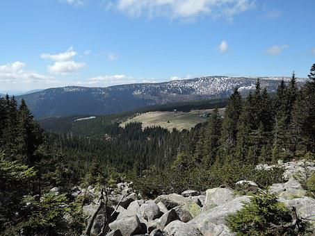 The Giant Mountains, Mountains, Hills, Stones, Spruces