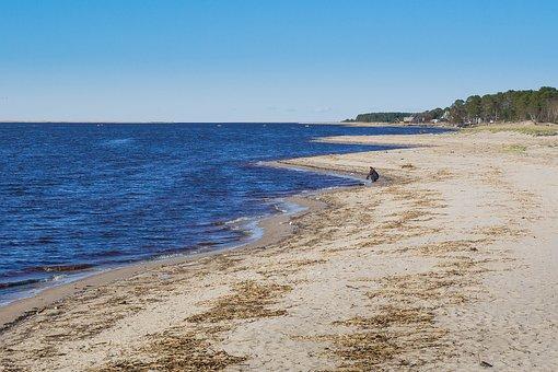 The Bright Sun, Sand, Beach, Sea, Water, Wet Sand