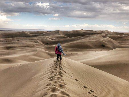 Wilderness, Sand, The Dunes, Nature, Adventure, Arid