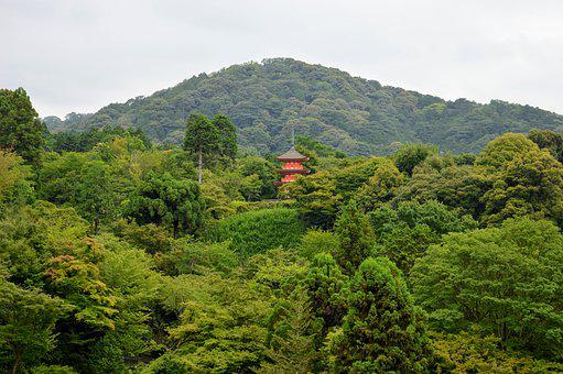 Kyoto, Japan, Temple, Japanese, Asia, Culture