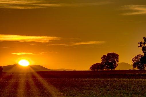 Sunset, Sun, Light Star, Trees, Nature, Mood, Sky