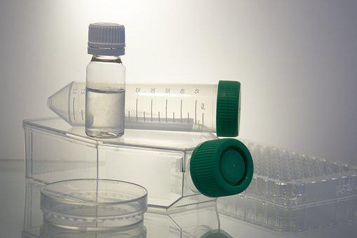 Science, Petri Dish, Test-tube, Bottle, Board