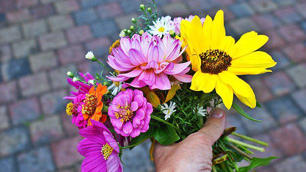 For You, Bouquet, Flowers, Give, Hand, Stick, Sunflower