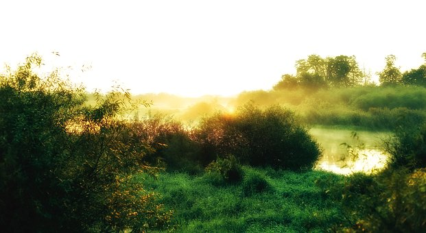 The Sun, East, Nature, Landscape, In The Morning