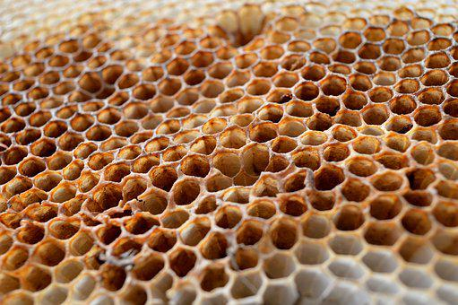 Honeycomb, Honeycomb Structure, Wax Plate