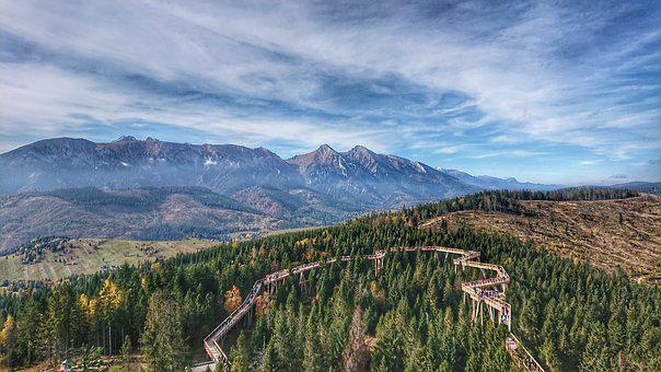 Forest, Mountain, Nature, Tatry, The Sky, Tree