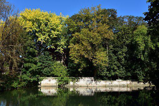 Nature, Autumn, Trees, Water, Channel, Wall, Old