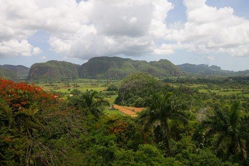 Cuba, Vinales, Nature, Trees, National Park, Sunset