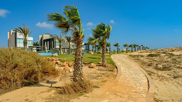 Path, Pedestrian, Walkway, Palm Trees, Villas, Tourism