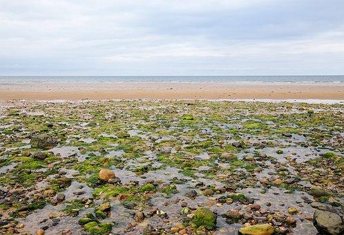 Scotland, Sea, Beach, Water, Sky
