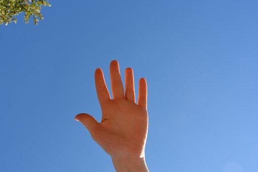 Maîn, Fingers Human Hand, Finger, Falenge, Articulation