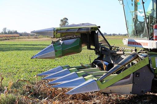 Harvester Claas Dominator 98 Sl, Front, Corn Harvesting