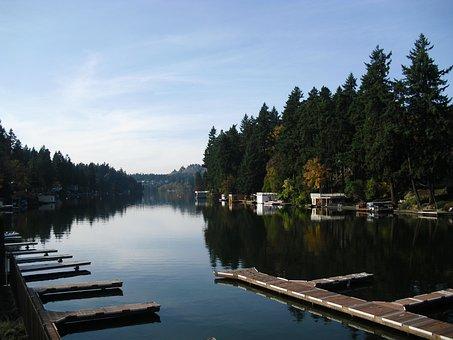 Lake, Marina, Trees