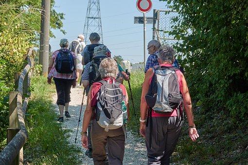 Wanderer, Group, Hiking, Human, Road, Landscape