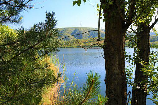 Lake, Tree, Water, Landscape, Nature, Reflection