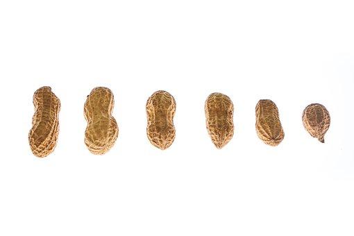 Peanut, Peanuts, Shelled, Sarmiento, Salt