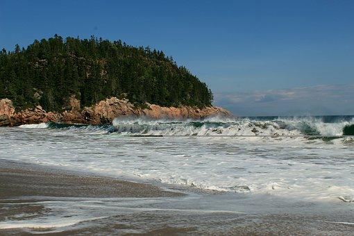 Forest, Atlantic, Island, Beach, Wave, Sea, Water, Surf
