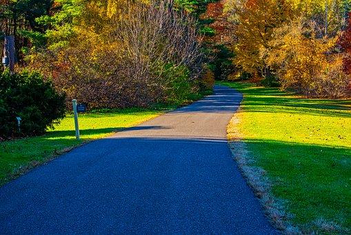 Autumn, Trees, Path, Colorful, Fall