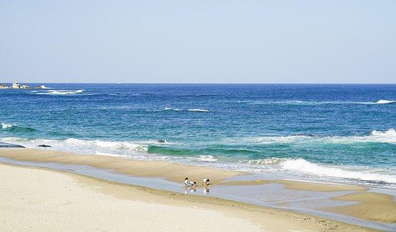 Sea, Children, Waves, Summer, Beach, Blue, Travel, Sky