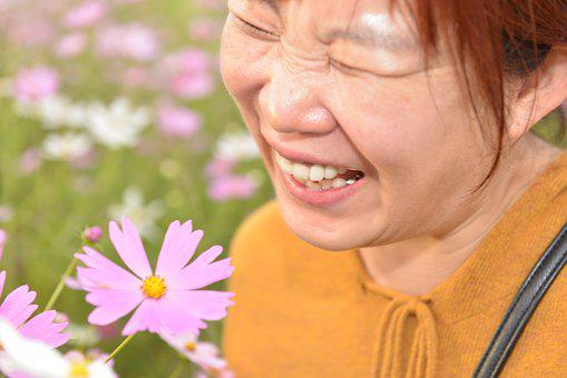 Fall Flowers, Cosmos, Woman, Flowers