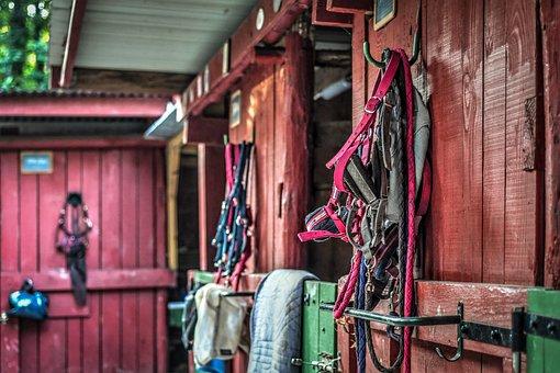 Stable, Box, Red, Green, Horseback Riding