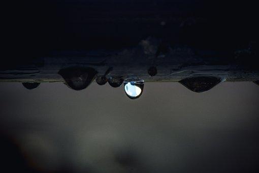 Drip, Wet, Rain, Water, Drop Of Water, Liquid, Clear