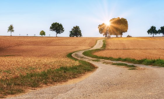 Away, Road, Lane, Landscape, Rural, Agriculture, Fields