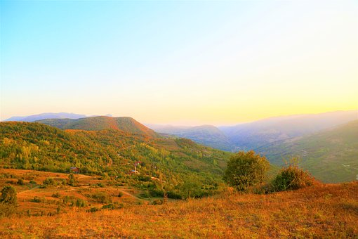 Landscape, Rural, Forest, Nature, Sunset, Trees