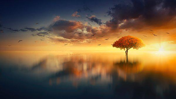 Sun, Water, Clouds, Mirroring, Trowel Pics, Sky, Summer
