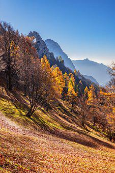 Landscape, Mountains, Autumn Mood, Hiking, Trees