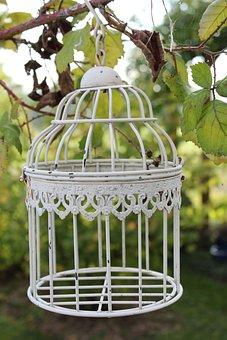 Cage, Tree, Garden, Deco, Vintage