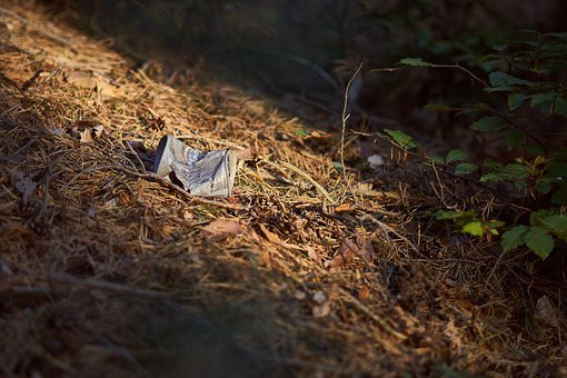 Pollution, Box, Garbage, Forest, Nature, Environment