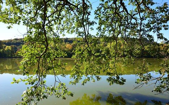 Park Lake, Mirroring, Greiz