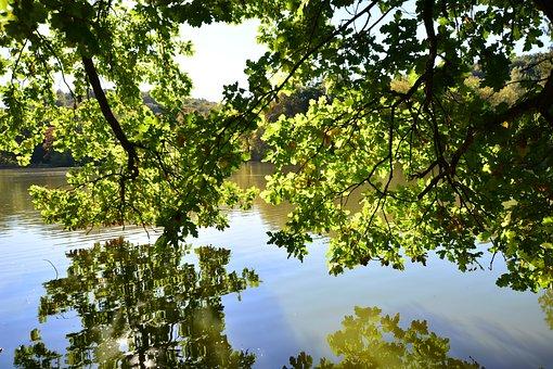 Park, Greiz, Thuringia Germany, Places Of Interest