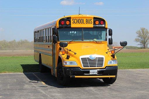 School Bus, Bus, Usa