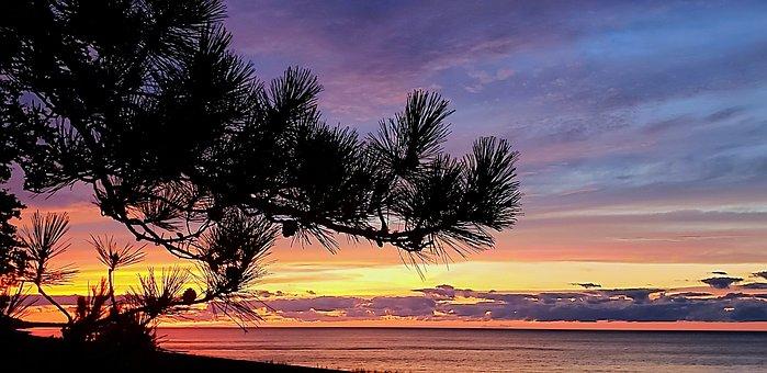 Sunset, Lake, Superior, Pine, Michigan