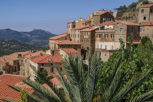 Corsican, Belgodère, Village, Hills, Palm