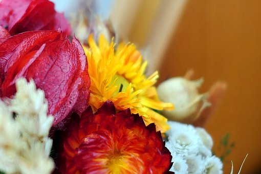 Dry Bouquet, Autumn, Flowers, Wreath, Deco, Bouquet