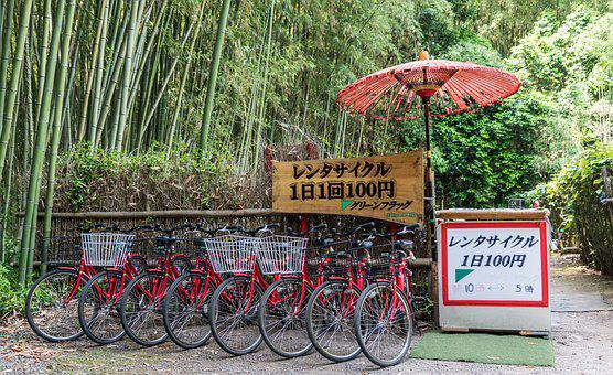 Japan, Bike Rentals, Bamboo Forest, Tourism, Kyoto