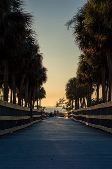 Beach, Boardwalk, Sunset, Palm Trees, Walkway