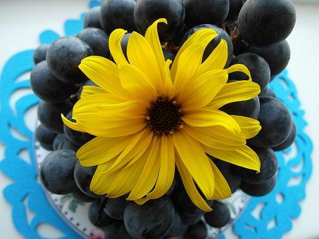 Grapes, Health, Fruit