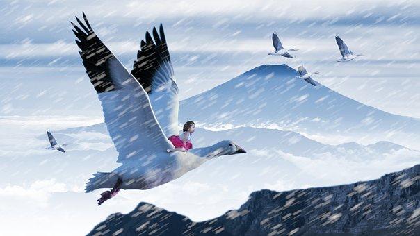 Fantasy, Goose, Girl, Snow, Mystical, Fairytale, Trick