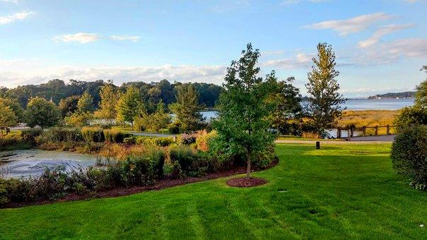 Garden, Lawn, Bay, Water, Harbor, Pond, Field, Tree